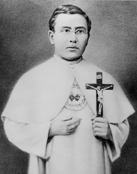 Father-Damien-around-1863-as-a-seminarian-in-France.jpg